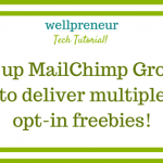Setup MailChimp Groups to Deliver Multiple Opt-In Freebies (Tech Tutorial!)